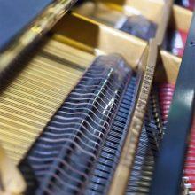 Musische Foerderung Klavier